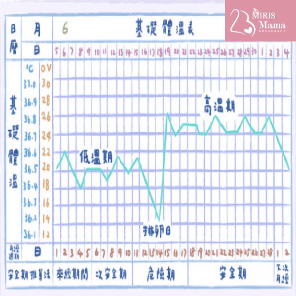 【推算排卵期4大方法】體溫紀錄法|Miris Mama孕婦產後修身按摩專門店
